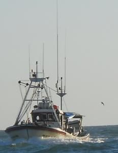 Pesquero gaditano saliendo a faenar